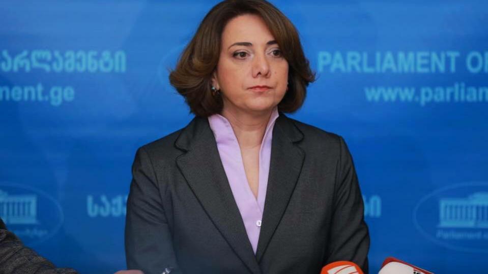 Slider-VMH partiyasının üzvü Avropalı Gürcüstan partiyasını ictimaiyyəti yanıltmamağa çağırdı